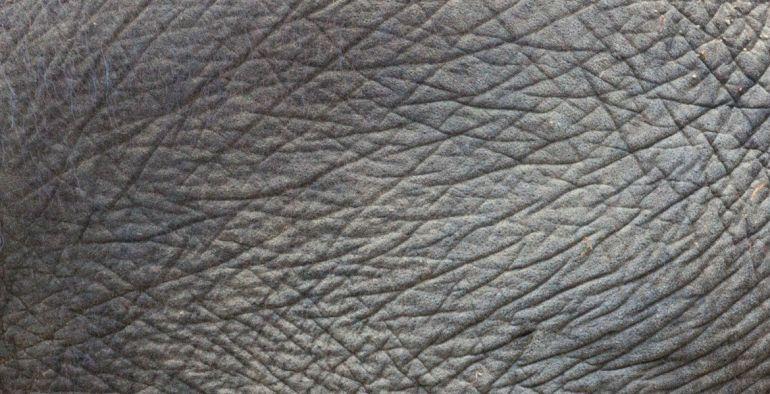 textura5